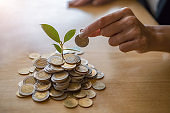 Businessman hand with trees growth up on coin to profit investment mutual fund finance and business. Help and Collaboration Business Concept.