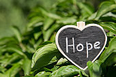 Hope - inscription on the heart, sharing hope concept, green bokeh background
