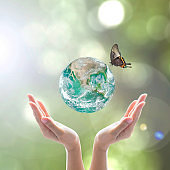 World environment day and ecological friendly concept with green planet on hands with tree leaves: Elements of this image furnished by NASA