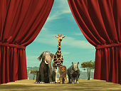 Group of wildlife animals standing in front of a opened curtain.