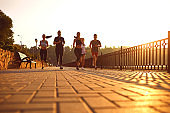 Group of runners in the park in the morning.