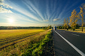 White truck arriving from a distance on an asphalt road in autumn rural landscape at sunset