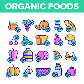 Organic Foods Vector Color Line Icons Set