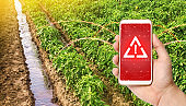 A phone and a warning sign on the background of pepper plantations. Farming and agriculture. Harmful pesticides. Environmental hazard threat. Radiation pollution, chemicals and microplastics.