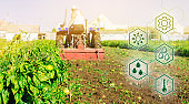 High technologies and innovations in agro-industry. Agricultural startup. Innovation. Automation and crop quality improvement. Tractor cultivates the soil after harvesting. Selective focus