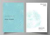 The vector illustration of editable layout of A4 format cover mockups design templates for brochure, magazine, flyer, booklet, annual report. Topographic contour map, abstract monochrome background.