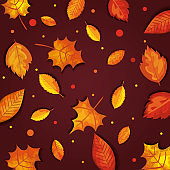 pattern of autumn with leafs
