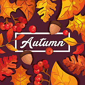autumn background with leafs and nuts fruit