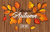 pattern welcome autumn with leafs in wooden