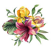 watercolor colorful bouquet with iris flower and tropical flower and leaves isolted on white background for card.