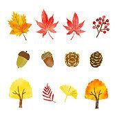Hand drawn watercolor style autumn plant illustration set
