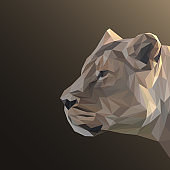 Lioness low poly design. Triangle vector illustration.