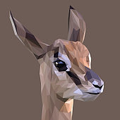 Rupicapra low poly design. Triangle vector illustration.