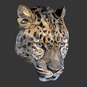 Cheetah cat low poly design. Triangle vector illustration.