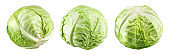 Green cabbage isolated. Cabbage on white. Set of fresh cabbages.