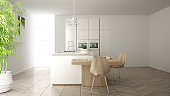 Modern clean contemporary white kitchen, island and wooden dining table with chairs, bamboo and potted plants, big window and herringbone parquet floor, minimalist interior design