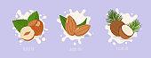 Almond, hazelnut and coconut  milk. Milk splash. Vector illustration.