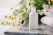 Natural herbal healthy cosmetics with chamomile, essential oil in glass zero waste bottle, fresh chamomile flowers, fragrant daisy oil, beauty treatment.