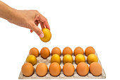 Golden egg opportunity with retirement planning concept of life assurance