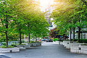 Green of office area in Vancouver