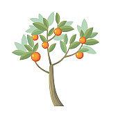 Vector Tree. Orange Isolated on White. Vector