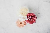 Vintage roses on marble