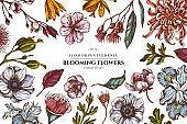 Floral design with colored japanese chrysanthemum, blackberry lily, eucalyptus flower, anemone, iris japonica, sakura
