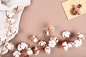 Cotton flowers with sweater and envelope on brown background