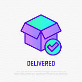 Delivered parcel: opened box with check mark. Thin line icon. Modern vector illustration for shipping service.