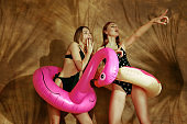 Beautiful girls isolated on braun studio background