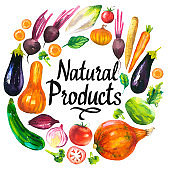 Watercolor illustration with round composition of farm products. Vegetables set: eggplant, pumpkin, zucchini, onion, tomato, broccoli, beets, carrots, cabbage kohlrabi. Fresh organic food.