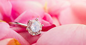 Jewelry diamond ring on beautiful pink rose petal background