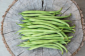 Freshly harvested green beans on tree stump in Ontario, Canada