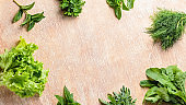 Different fresh herbs for cooking on a table, copy space, closeup