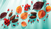 Autumn composition with leaves, pumpkins, rowan berries on mint background in harsh light. Fall, thanksgiving concept.