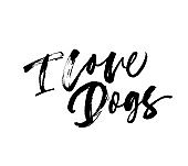 I love dogs phrase. Vector hand drawn brush style modern calligraphy.