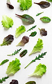 Green salad leaves on a white background. Pattern with lettuce leaves. Background design with leaves for salad. Pattern with lettuce leaves. Slimming, vegetarianism, organic food