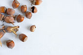 Hazelnuts on a light background. Healthy nuts. Fruits of a forest shrub, hazel. Flat lay, top view.