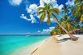 Tropical beach in Punta Cana, Dominican Republic. Caribbean island.