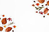 Autumn composition. Physalis flowers, eucalyptus leaves, rowan berries on white background. Autumn, fall, thanksgiving day concept. Flat lay, top view, copy space