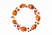 Autumn composition. Wreath made of dried leaves, flowers, rowan berries on white background. Autumn, fall, thanksgiving day concept. Flat lay, top view, copy space