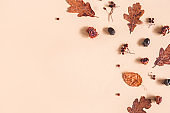 Autumn composition. Frame made of oak leaves, flowers, acorns on beige background. Autumn, fall concept. Flat lay, top view, copy space