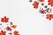 Autumn composition. Frame made of flowers, maple leaves on gray background. Autumn, fall, thanksgiving day concept. Flat lay, top view, copy space