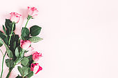 Flowers composition. Pink rose flowers on pastel pink background. Flat lay, top view, copy space