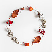 Autumn composition. Wreath made of dried flowers, eucalyptus leaves, berries on gray background. Autumn, fall, thanksgiving day concept. Flat lay, top view, copy space, square