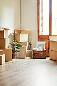 Cardboard boxes and potted plants in new house