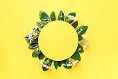 Summer and spring concept. Tropical nature background with green leaves, white flowers and white empty square frame for copy space on yellow paper. Top view. Flat lay. Creative advertising