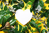 Tropical nature background with green leaves and white heart shaped paper for copy space. Top view. Flat lay. Creative advertising. Summer and love concept.