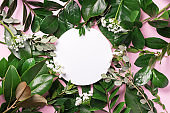Summer and spring concept. Tropical nature background with green leaves and white empty circle frame for copy space on pink paper. Top view. Flat lay. Creative advertising