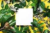 Summer and spring concept. Tropical nature background with green leaves and white empty square frame for copy space on yellow paper. Top view. Flat lay. Creative advertising
